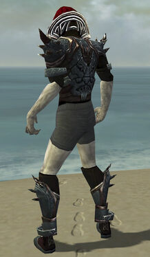 Necromancer Asuran Armor M gray chest feet back.jpg