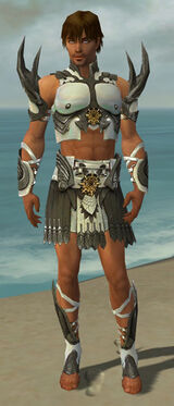 Paragon Elite Sunspear Armor M gray front.jpg