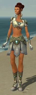 Paragon Monument Armor F gray front.jpg