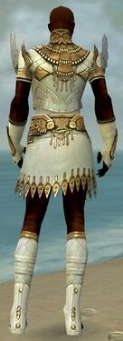 Paragon Vabbian Armor M dyed back.jpg