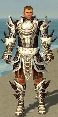 Warrior Monument Armor M nohelmet.jpg