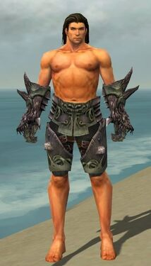 Warrior Primeval Armor M gray arms legs front.jpg