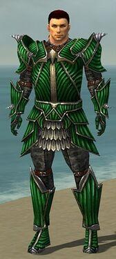 Warrior Wyvern Armor M nohelmet.jpg