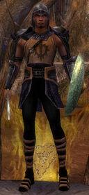 Shining Blade Warrior.jpg