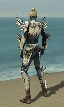 Assassin Asuran Armor M dyed back.jpg