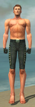 Mesmer Rogue Armor M gray arms legs front.jpg