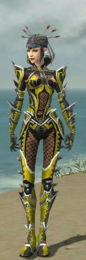 Necromancer Elite Kurzick Armor F dyed front.jpg