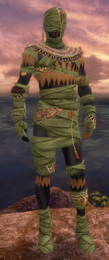 Ritualist Ancient Armor M dyed front.jpg