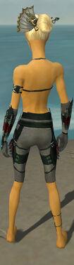 Assassin Seitung Armor F gray arms legs back.jpg