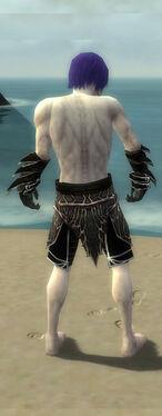 Necromancer Elite Luxon Armor M gray arms legs back.jpg