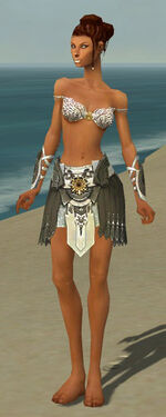 Paragon Elite Sunspear Armor F gray arms legs front.jpg
