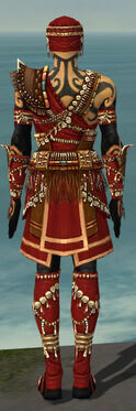 Ritualist Imperial Armor M dyed back.jpg