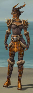 Warrior Charr Hide Armor F dyed front.jpg