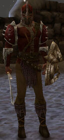Ascalon Guard Hayden.jpg