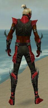 Assassin Luxon Armor M dyed back.jpg