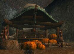 Halloween Droknar Pumpkins.JPG