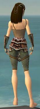 Ranger Shing Jea Armor F gray arms legs back.jpg