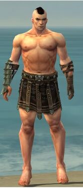 Warrior Elite Gladiator Armor M gray arms legs front.jpg