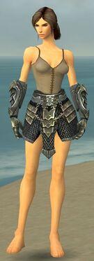 Warrior Elite Templar Armor F gray arms legs front.jpg