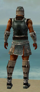 Warrior Istani Armor M gray back.jpg