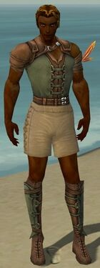 Ranger Ascalon Armor M gray chest feet front.jpg