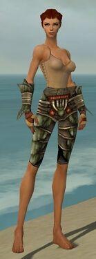 Ranger Elite Drakescale Armor F gray arms legs front.jpg