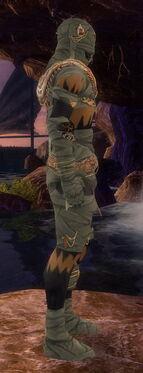Ritualist Ancient Armor M gray side.jpg