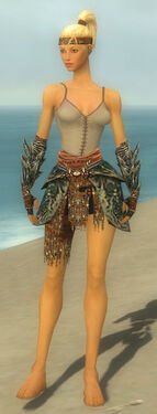 Warrior Luxon Armor F gray arms legs front.jpg