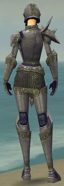 Warrior Platemail Armor F gray back.jpg