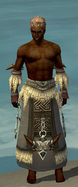 Dervish Norn Armor M gray arms legs front.jpg