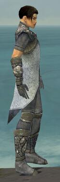 Elementalist Stoneforged Armor M gray side.jpg