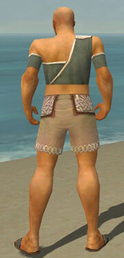 Monk Ascalon Armor M gray chest feet back.jpg