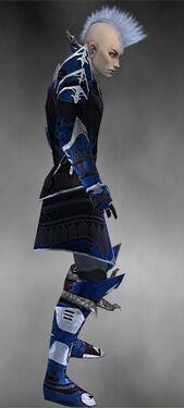 Necromancer Deldrimor Armor M dyed side.jpg