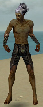 Necromancer Istani Armor M gray arms legs front.jpg