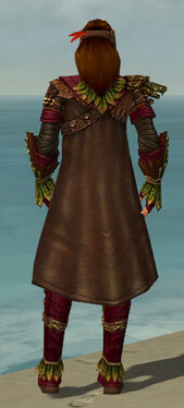Ranger Druid Armor M dyed back.jpg