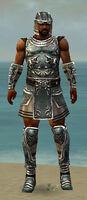 Warrior Istani Armor M gray front.jpg