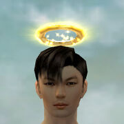 Divine Halo gray front.jpg