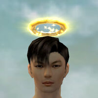 Divine Halo gray front.jpg