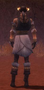 Elementalist Elite Sunspear Armor M gray back.jpg