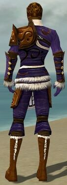 Ranger Canthan Armor M dyed back.jpg