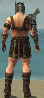 Warrior Elite Gladiator Armor M gray back.jpg