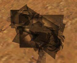 Black Moa Chick glitch 3.jpg