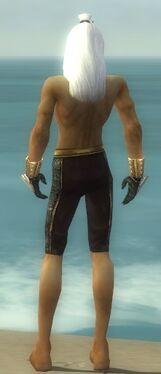 Elementalist Elite Sunspear Armor M gray arms legs back.jpg
