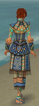 Monk Elite Luxon Armor F dyed back.jpg