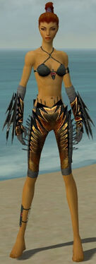 Assassin Elite Exotic Armor F gray arms legs front.jpg