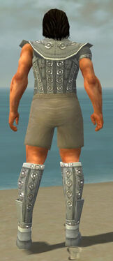 Warrior Ascalon Armor M gray chest feet back.jpg