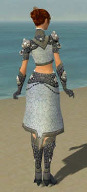 Elementalist Stoneforged Armor F gray back.jpg
