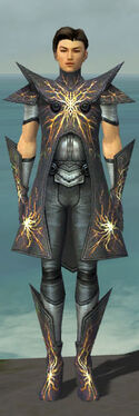Elementalist Stormforged Armor M dyed front.jpg