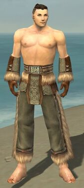 Monk Norn Armor M gray arms legs front.jpg