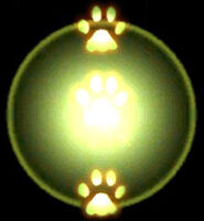 Ranger-twopaws-animation.jpg